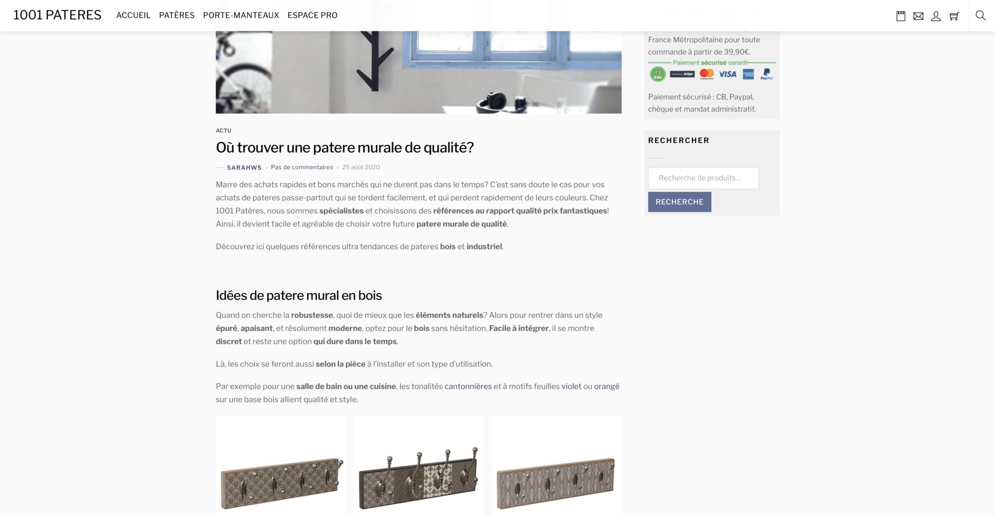 web-content-webshop-e-commerce-blog-page-1001-pateres